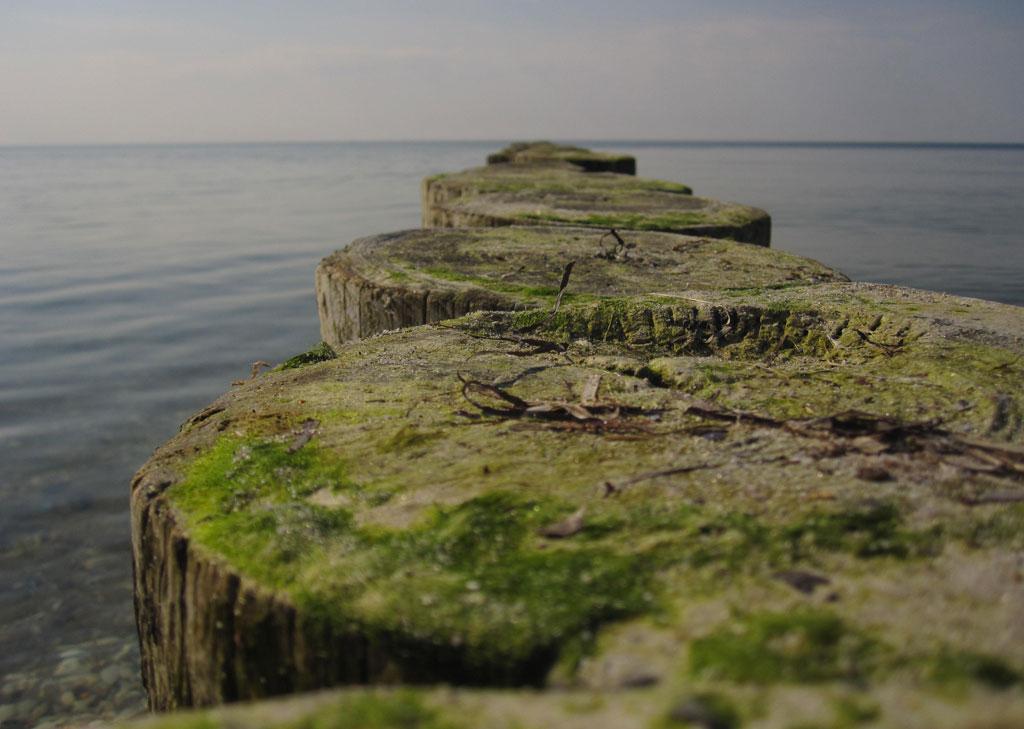Strand Ostsee Buhnen