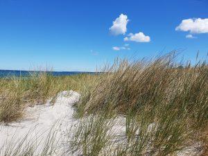 Ostsee, baltic sea